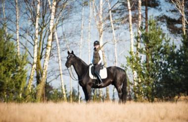 Woodland Dressage: Canter for Strength